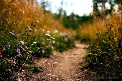rachel-oglesby-photography-colorado-trail-2009-1